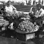 22 florarese1 150x150 Galerie foto Bucurestiul vechi: Din societate