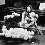 24 asteptand dupa iubitorii de crizanteme1 150x150 Galerie foto Bucurestiul vechi: Din societate