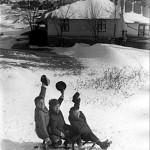 50 copii cu sania in cartierul floreasca1 150x150 Galerie foto Bucurestiul vechi: Din societate