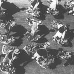 55 negustori din oltenia raspinditi pe toata strada pentru1 150x150 Galerie foto Bucurestiul vechi: Din societate