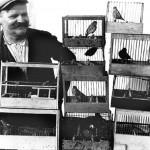 76 vanzatur de sticleti si scatii in colivie1 150x150 Galerie foto Bucurestiul vechi: Din societate